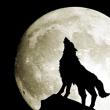 人狼の歴史